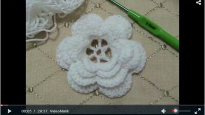 Tığ İşi Çiçek Motifi Yapımı~~